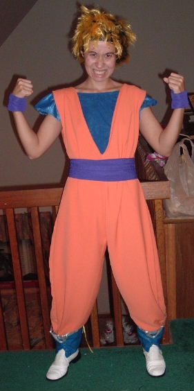 Goku Costume
