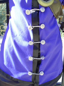 Lilly Pendragon Costume