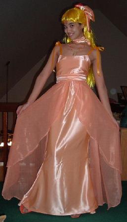 Neo Princess Venus Costume Cosplay